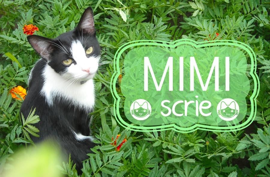 Mimi scrie